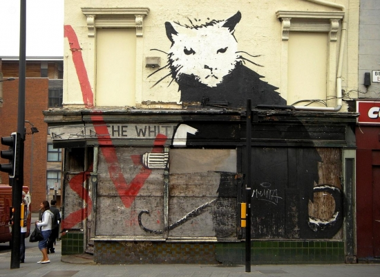 cats-banksy-street-art-fresh-new-hd-wallpaper-banksy-1911687724