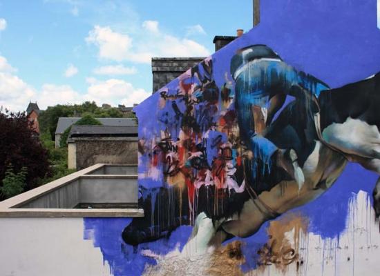brooklyn-street-art-conor-harrington-dublin-cowboys